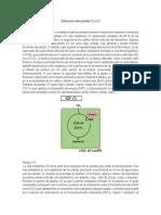 Diferencias entre plantas C3 y C4.docx