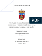 Machado_López.pdf
