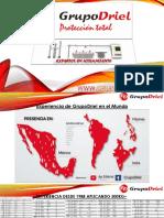 Presentacion GrupoDriel (1).pdf