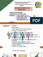 Direccion-niveles de Direccion GESTION