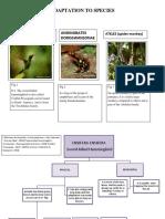 TYPES OF ANIMALS.docx