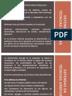 Defensas Primarias en Técnicas Gráficas