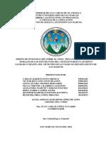 DISEÑO DE INVESTIGACIÒN LIC. ELIZABETH - copia.docx