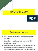 EXAMEN PELVICO