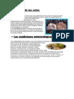 Ecología de Las Setas (1)