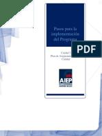 Pasos Para La Implementación de Un Programa de Auditoria