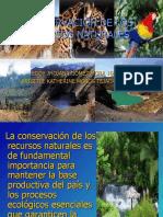 conservaciondelosrecursosnaturales-100826092938-phpapp02
