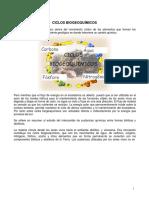 11_bIOLOGIA.pdf
