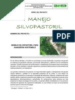 Perfil de Proyecto MANEJO SILVICULTURAL.docx