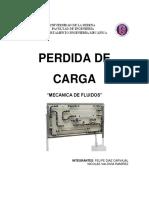 250695910-Informe-Perdida-de-Carga.pdf