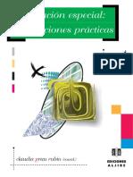 Educación_especial__orientaciones_prácticas.pdf