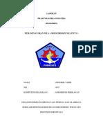 LAPORAN HENDRIK TAHIR.docx
