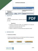 Informe Expo 1.1.docx