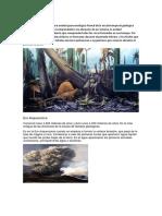 PERIODO GEOLOGICO.docx
