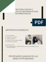 ESTRUCTURA FUNCION Y REPLICACIÓN DE MACROMOLECULAS INFORMACIONALES.pptx