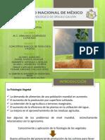 Presentación.Equipo1.CONCEPTOS.Fisiol.Veg.pptx
