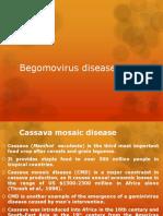 Begomovirus Diseases in India