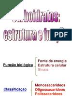 aula-3---oligo-e-polissacarideos.pdf
