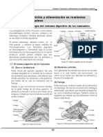 manual Bovinos anatomia y digestion 2.pdf