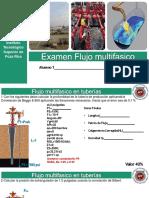 flujo-multifasico-examen