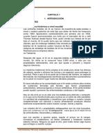 ivan_proyecto_revision 18353.docx