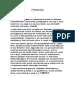 CRISIS VITALES1.docx