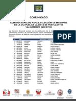 Lista de postulantes válidamente inscritos a la Junta Nacional de Justicia