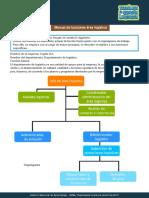 Manual_de_funciones_area_logistica.pdf