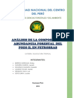 UNIVERSIDAD-NACIONAL-DEL-CENTRO-DEL-PERÚ (1).docx