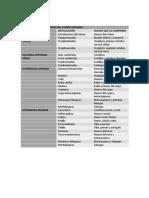 PRINCIPALES ARTICULACIONES DEL CUERPO HUMANO.docx