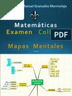 Mapas Mentales Matemáticas Mtro. Luis Granados ColBach 19