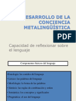 Pdf CONCIENCIA Metalingstica