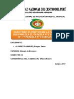 Informe Composición Floristica Parcela 1,2y3