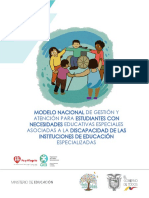 Modelo-IEE.pdf