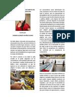 Cambios Drasticos en Los Habitos Del Consumidor Venezolano