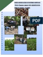 GomezBetancurL_2017_EstudioConversiónAgroecológica.pdf