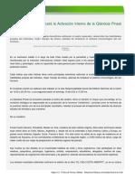 Método Cyclopea Buscará La Activación Interna de La Glándula Pineal en Valdivianos
