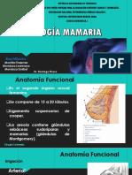PATOLOGÍA MAMARIA.pptx