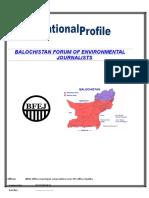 Bfej Profile Original