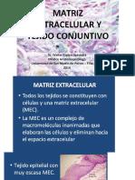 Matriz Cel y Tej Conjuntivo