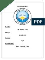 Lab Report 12.docx