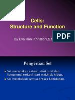 Struktur Sel 1