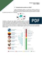 1ºmedio Contaminación acústica en CHILE.docx