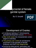 The Female Genital Organs Development.pdf