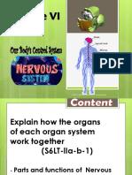 Nervous System Q2 D11