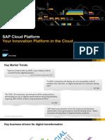 SAP-cloud-platform.pdf