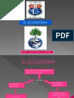 Trabajo Ecosistema Consecuencias