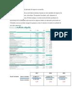 Principio de Negocio en Marcha y Progama de Auditoria.