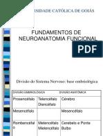 Neuroanatomia completa(1).ppt