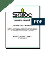 Informe Final Plamsur - Satoc - 2009